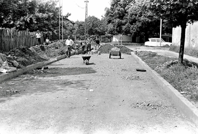 Banatska ulica 2