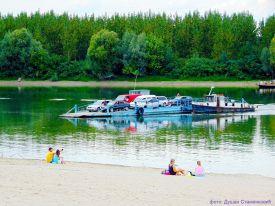 Dunav Futog