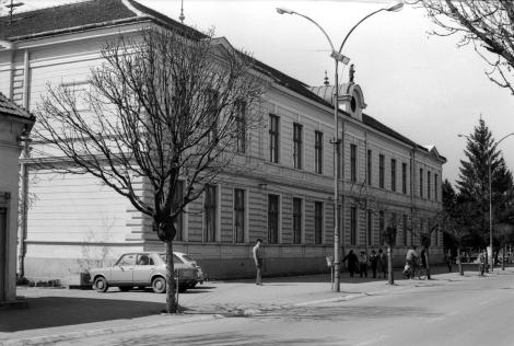 Skola Djura Jaksic 333