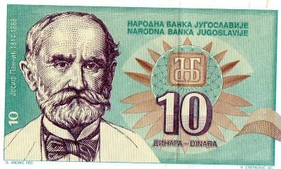 10-dinara-Josif-Pancic_slika_O_40521917