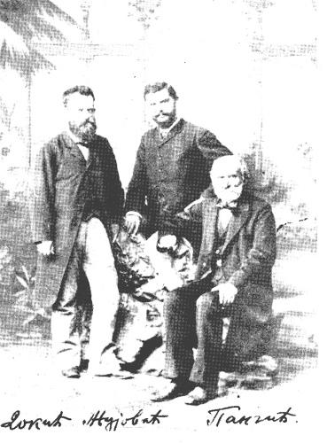 Pancic-Zujovic-Dokic1883
